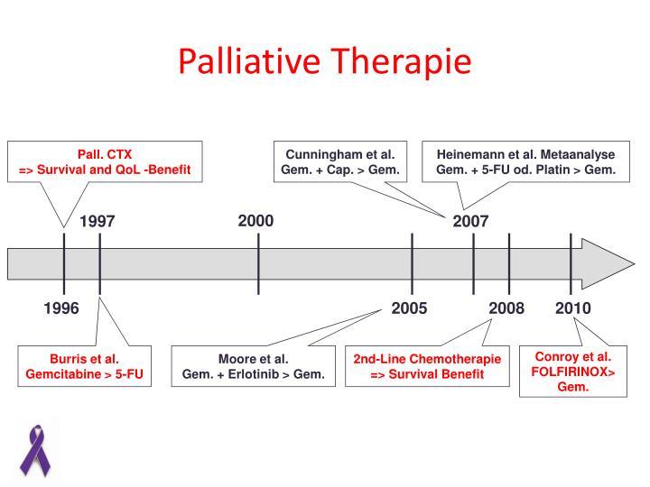 Palliative Therapie