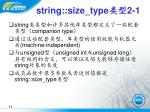 string size type 2 1