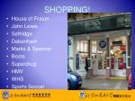 shopping4