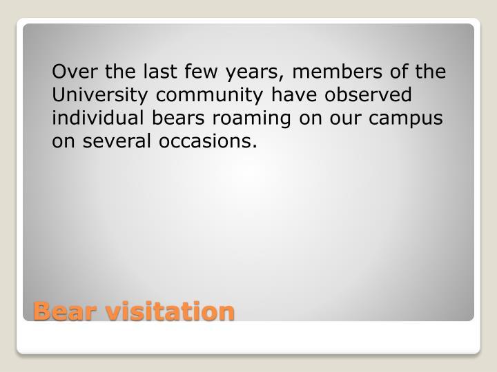 Bear visitation