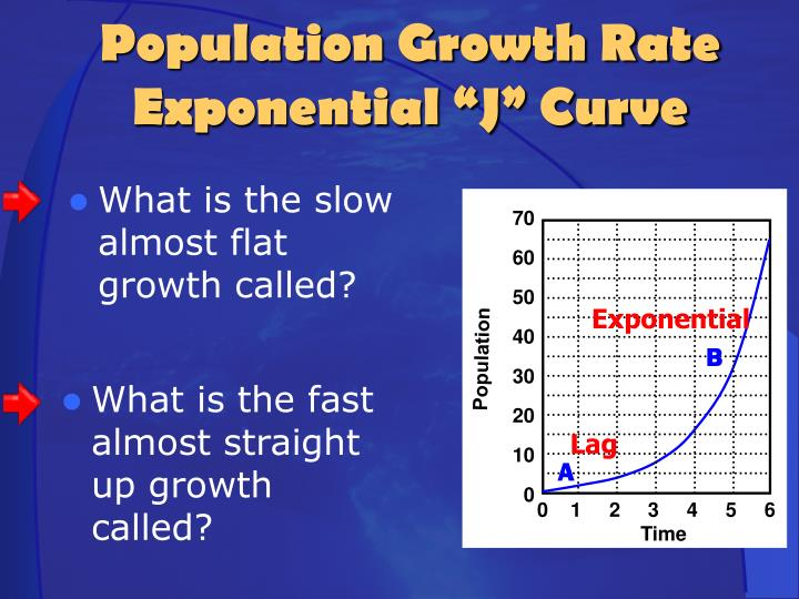 What is the slow almost flat growth called?