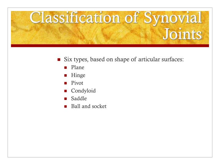 classification of synovial joints n.