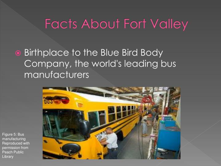 Facts About Fort Valley