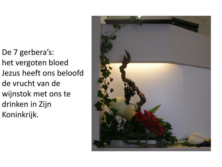 De 7 gerbera's: