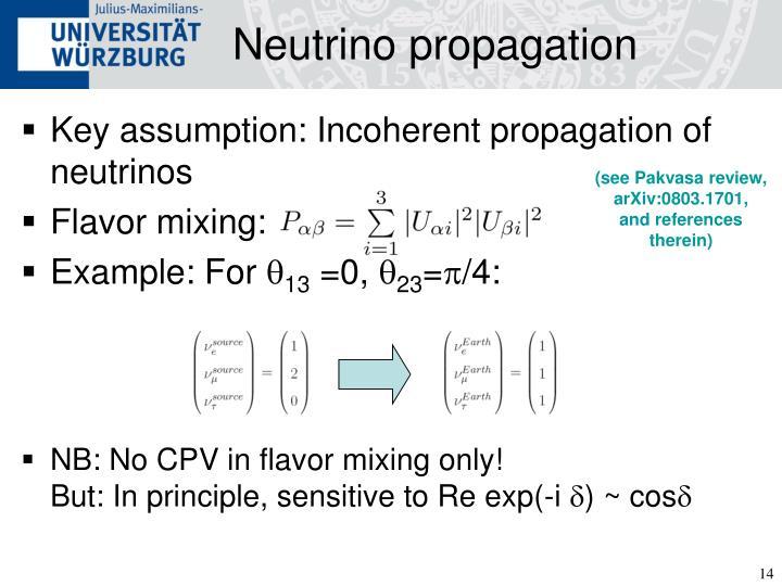 Neutrino propagation