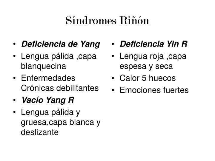 Síndromes Riñón