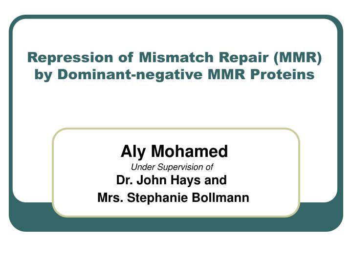 Repression of mismatch repair mmr by dominant negative mmr proteins
