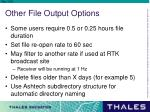 other file output options1