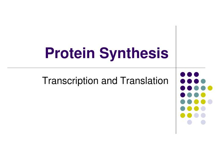 protein synthesis n.
