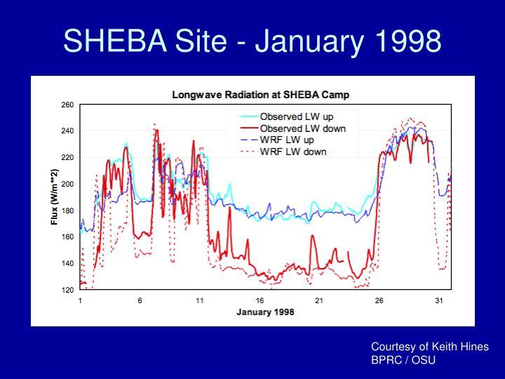 SHEBA Site - January 1998