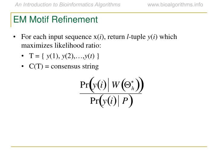 EM Motif Refinement