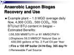 anaerobic lagoon biogas recovery and use