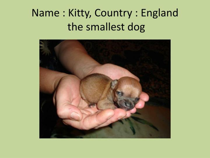 Name : Kitty, Country : England