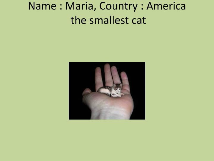 Name : Maria, Country : America