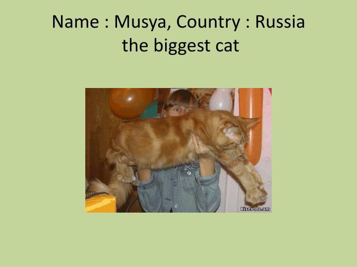Name :
