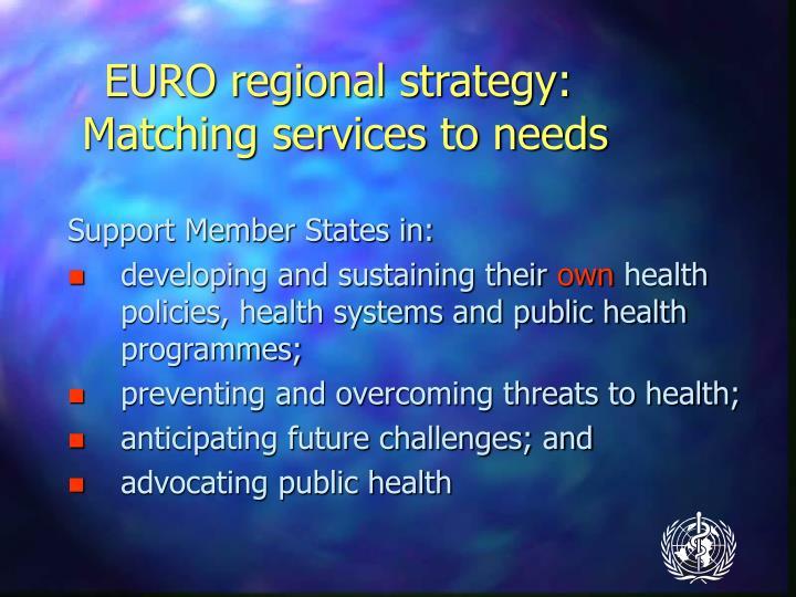 EURO regional strategy: