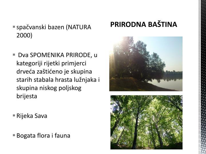 spačvanski bazen (NATURA 2000)