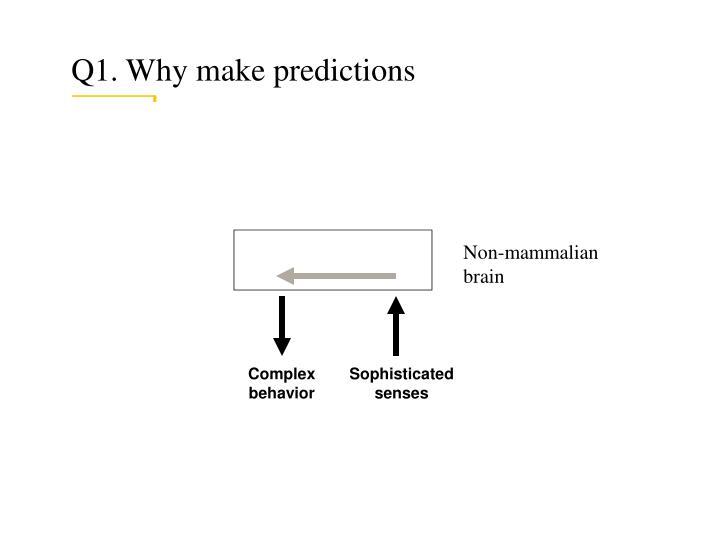 Q1. Why make predictions