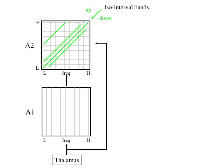 Iso-interval bands