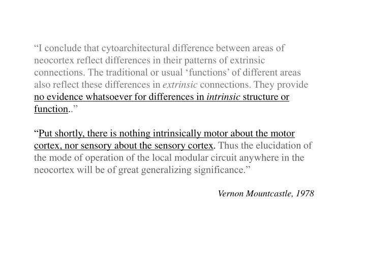"""""""I conclude that cytoarchitectural difference between areas of neocortex reflect differences in th..."""