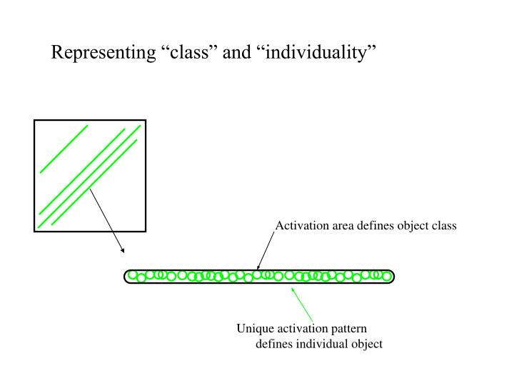 """Representing """"class"""" and """"individuality"""""""