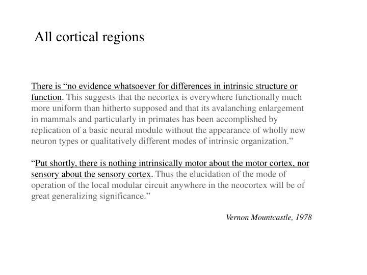 All cortical regions