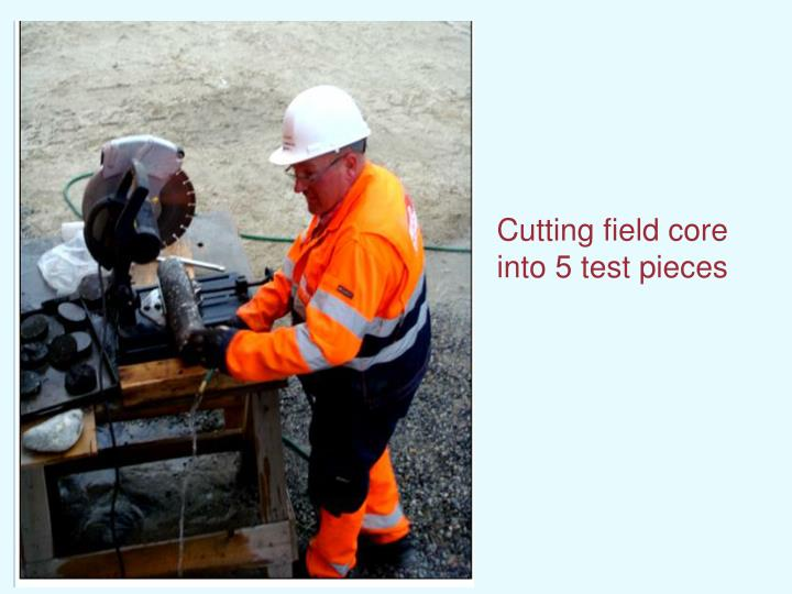 Cutting field core into 5 test pieces