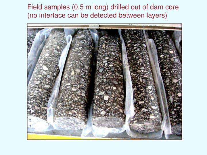Field samples (0.5 m long) drilled out of dam core
