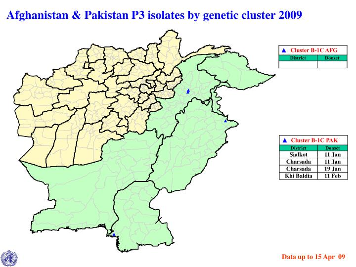 Afghanistan & Pakistan P3 isolates by genetic cluster 2009