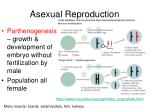 asexual reproduction2