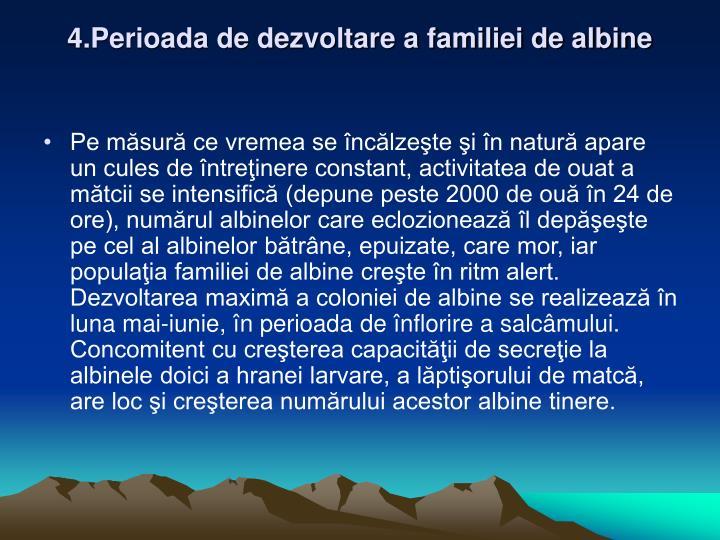 4.Perioada de dezvoltare a familiei de albine