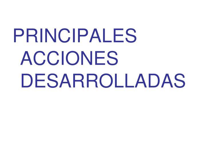 PRINCIPALES ACCIONES DESARROLLADAS