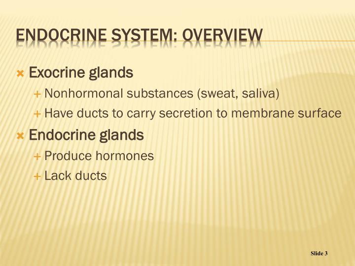 Exocrine glands