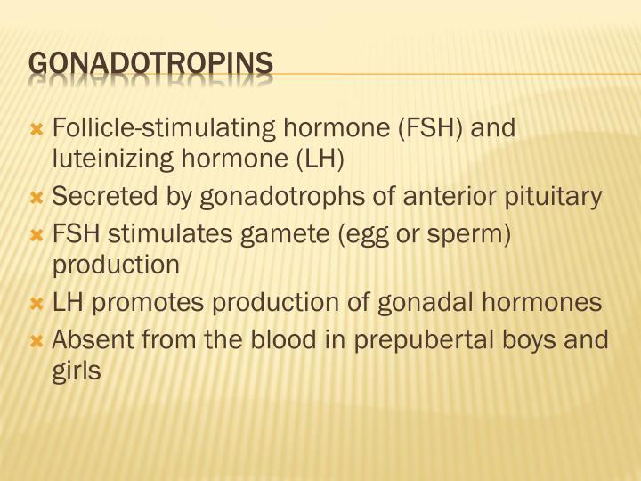 Follicle-stimulating hormone (FSH) and luteinizing hormone (LH)