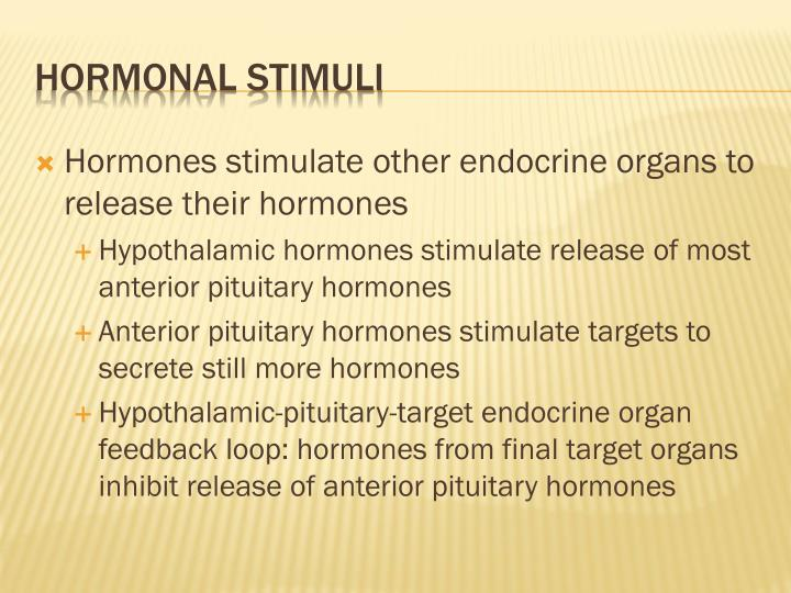 Hormones stimulate other endocrine organs to release their hormones