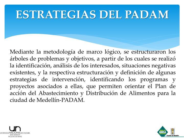 ESTRATEGIAS DEL PADAM
