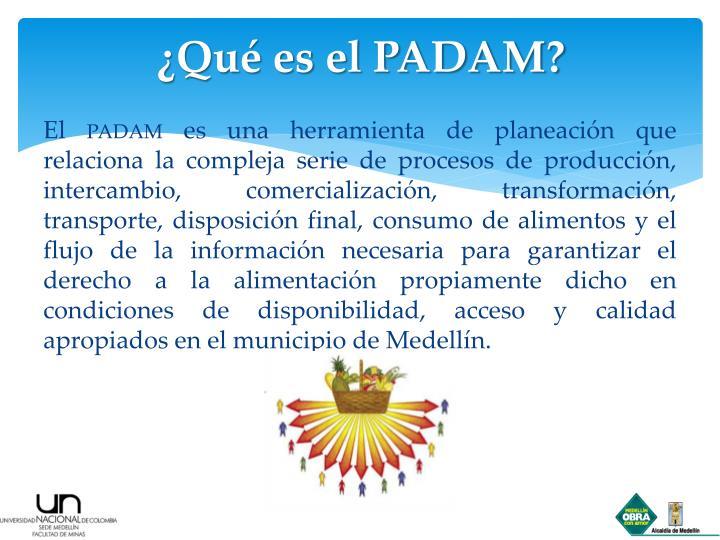 ¿Qué es el PADAM?