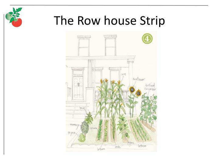 The Row house Strip