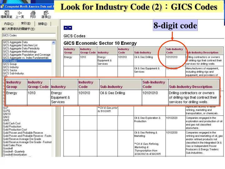 Look for Industry Code (2)
