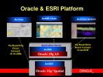 oracle esri platform