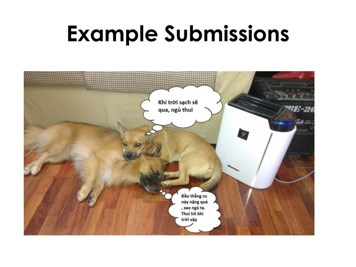 Example Submissions