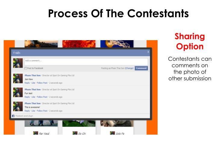 Process Of The Contestants