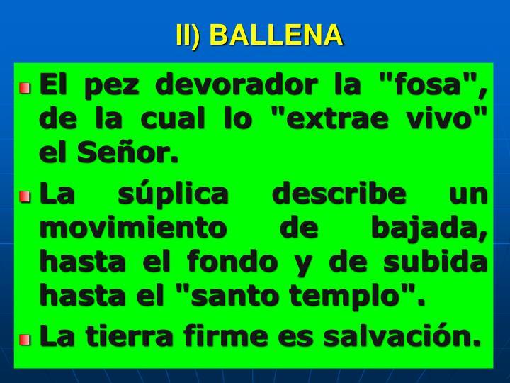 II) BALLENA