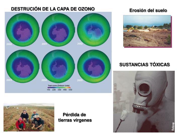 DESTRUCIÓN DE LA CAPA DE OZONO