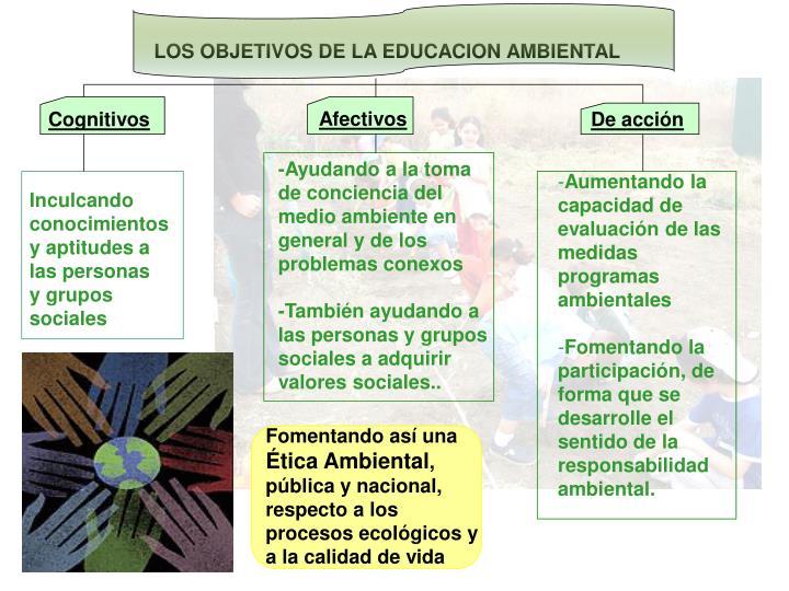 LOS OBJETIVOS DE LA EDUCACION AMBIENTAL