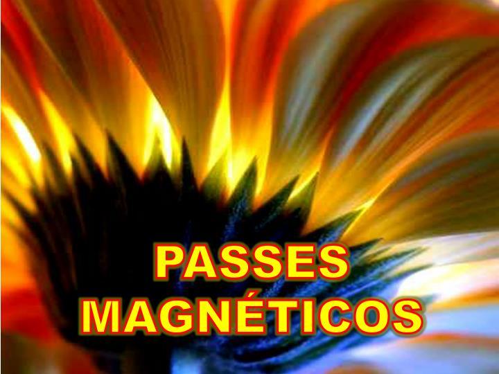 PASSES MAGNÉTICOS