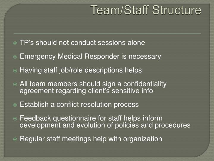 Team/Staff Structure