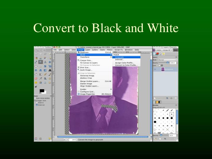 Convert to Black and White