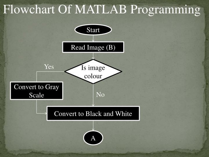 Flowchart Of MATLAB Programming