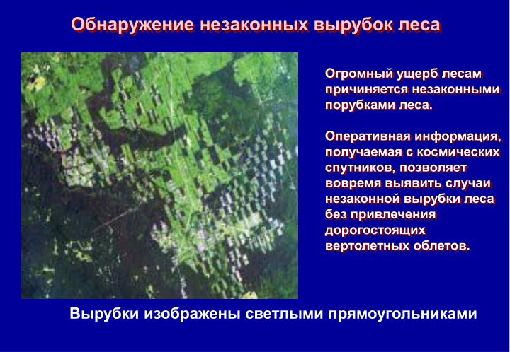 Обнаружение незаконных вырубок леса